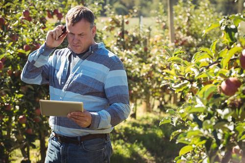 O produtor rural brasileiro no processo agro digital