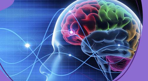 Decifrando o cérebro do consumidor